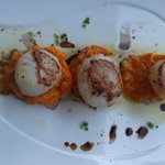 Scallops over pureed carrots