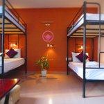 hue backpacker-hostel-tigon hostel