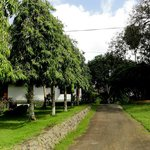 Road to Shanthi Lanka