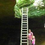 Trail # 4 Ladders
