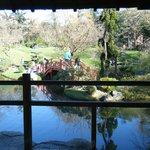 ponte no jardim japones