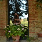 A reflection in the farmhouse window to remind us of our time at Le Caggiole