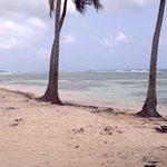 La plage de Bois-Jolan