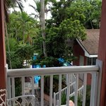 View from Bamboo II porch