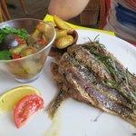Sardines (plat du jour)
