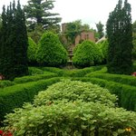 Boxwood garden at Ruins