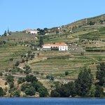 Quinta desde Douro