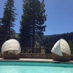 Adult Quiet Pool view