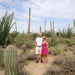 Saguaro with my Dad