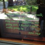 inspiration from john muir