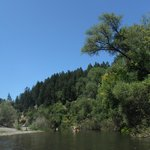 Canoeing and kayaking on the Russian River