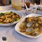 Brocollo Mushrooms & Clams