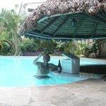 bar acuatico
