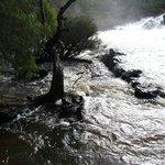 Kevill Falls - august 2013