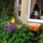 Foto de Rose Lodge Guest House