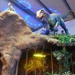 Jurassic Course