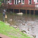 Restaurant overlooking the duck pond