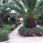 Giardini curati e puliti