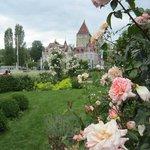 Roseraie avec vue sur le Château