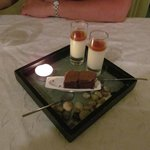 Pannacotta with apricot/apple jus, with chocolate 'brownie'. Real pebbles ,(not for eating)