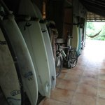 Surf boards!