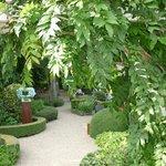 Prachtige tuin om iets te drinken, lezen en...
