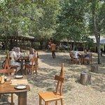 Dining in Mara Bush Camp