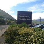 Blackberry Restaurant