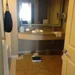 Bathroom Sink area with hair dryer hanging in black bag