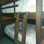 Bottom Bunks in Bungalow #29. Two more single beds above (not pictured)