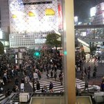 shibuya crossing visto des del starbucks