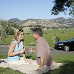 Champagne Toast - Winery Picnic