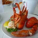 yummy lobster meal