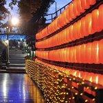 紅燈籠木棧道