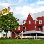 Dolly Parton's Dixie Stampede - The Most Fun Place To Eat In The Smokies!
