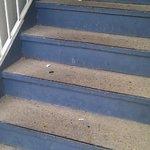 escalier rempli de détritus