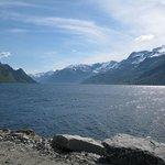 Sørfjorden