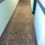 Couloir avec tapis sale, usé et défraîchi