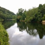 View down river Wye
