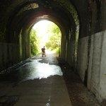 Shaugh Tunnel