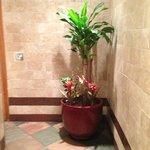 Ladies Restroom, very nice, very clean