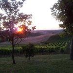 Uno degli splendidi tramonti che puoi vedere all'Agriturismo Bagnaia.