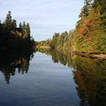 Woodard Bay Natural Resources Conservation Area Foto