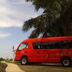 Bali Tour Arrangement