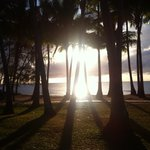 Palm Cove beach in the morning (a little walk away)