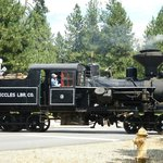 Steam locomotive at Sumpter Crossing