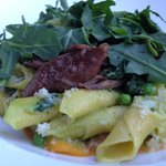 Garganelli with Duck confit