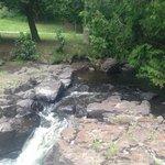 Creek in garden area