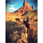 Horseback riding from hotel