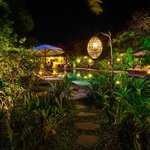 Night View of Garden